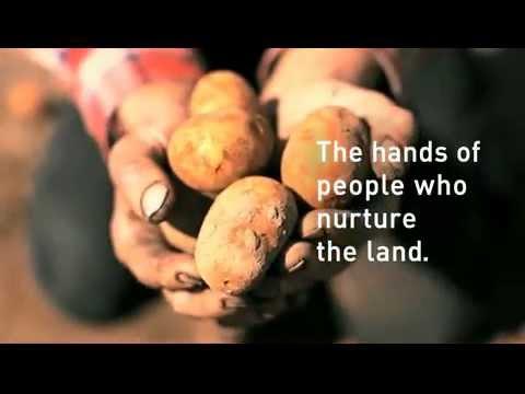 一番綺麗な手