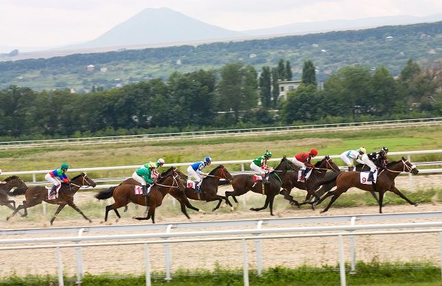 "Race for the prize of the ""Salamova"" in Pyatigorsk,Northern Caucasus, Russia."
