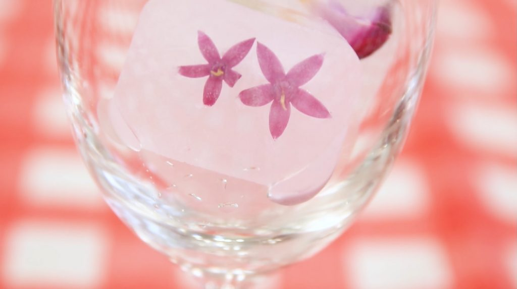 Flower_in_Ice0